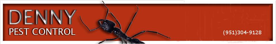 Denny Pest Control Murrieta, Ca